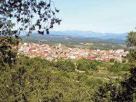 Empresa de transformación de castañas en Salamanca